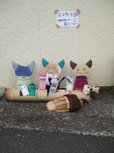 080 棚田のネコ歩き