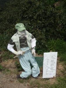 077 松枯れ現象 (2)