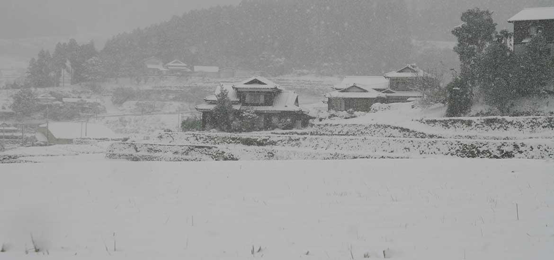 20160125大雪3